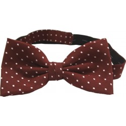 Bordeaux dotted bow tie