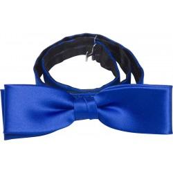 Cobalt blue bow tie